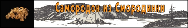 Самородок из Смородинки - Книга для подростков